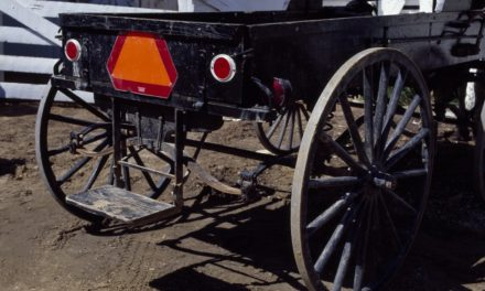 Wisconsin lawmakers look at new registration fees for horse-drawn buggies