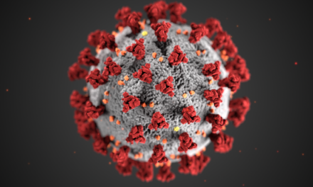 Study: Ending Wisconsin's Safer at Home order did not lead to coronavirus spike