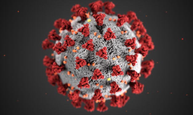 Study on Coronavirus and Protests Questioned
